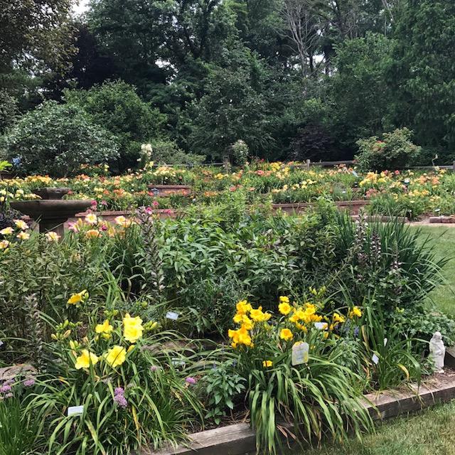 Southern Cross Garden, McMurray Pennsylvania